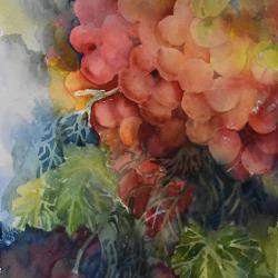 """Fruit of the Vine 13""""x10"""" watercolor"""