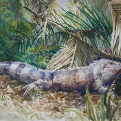 "Iguana 20""x30"" watercolor"